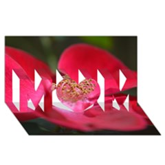 Bright Red Rose Mom 3d Greeting Card (8x4)  by timelessartoncanvas