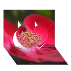 Bright Red Rose Heart 3d Greeting Card (7x5)  by timelessartoncanvas