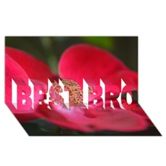 Bright Red Rose Best Bro 3d Greeting Card (8x4)  by timelessartoncanvas
