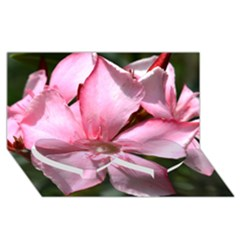 Pink Oleander Twin Heart Bottom 3D Greeting Card (8x4)