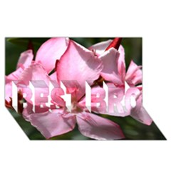 Pink Oleander Best Bro 3d Greeting Card (8x4)  by timelessartoncanvas