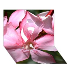 Pink Oleander Ribbon 3d Greeting Card (7x5)