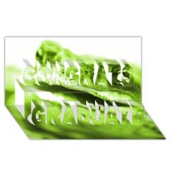 Green Frog Congrats Graduate 3d Greeting Card (8x4)
