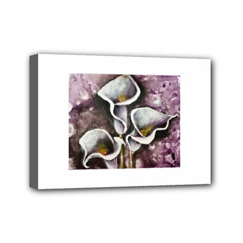 Gala Lilies Mini Canvas 7  X 5  by timelessartoncanvas