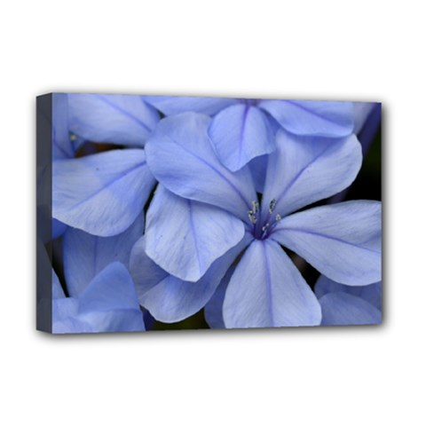 Bright Blue Flowers Deluxe Canvas 18  X 12   by timelessartoncanvas