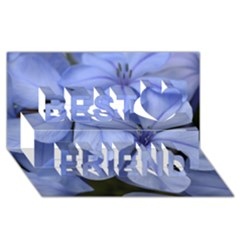 Bright Blue Flowers Best Friends 3d Greeting Card (8x4)