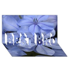 Bright Blue Flowers Best Bro 3d Greeting Card (8x4)  by timelessartoncanvas