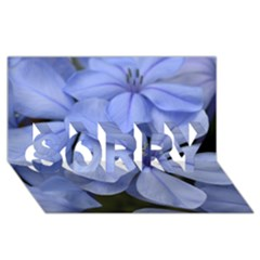 Bright Blue Flowers Sorry 3d Greeting Card (8x4)  by timelessartoncanvas