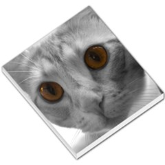 Funny Cat Small Memo Pads by timelessartoncanvas