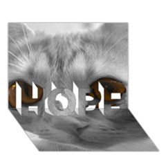 Funny Cat Hope 3d Greeting Card (7x5)
