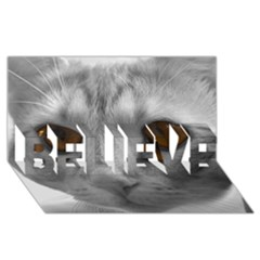 Funny Cat Believe 3d Greeting Card (8x4)  by timelessartoncanvas
