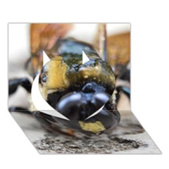 Bumble Bee 2 Heart 3d Greeting Card (7x5)  by timelessartoncanvas
