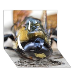 Bumble Bee 2 Apple 3d Greeting Card (7x5)  by timelessartoncanvas