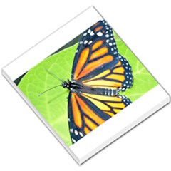 Butterfly 2 Small Memo Pads