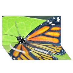 Butterfly 2 Twin Heart Bottom 3d Greeting Card (8x4)