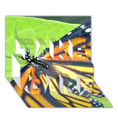 Butterfly 2 TAKE CARE 3D Greeting Card (7x5)  by timelessartoncanvas