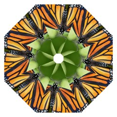 Butterfly 3 Folding Umbrellas by timelessartoncanvas