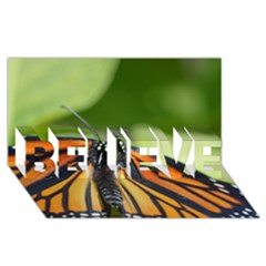 Butterfly 3 Believe 3d Greeting Card (8x4)  by timelessartoncanvas