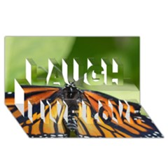 Butterfly 3 Laugh Live Love 3d Greeting Card (8x4)  by timelessartoncanvas