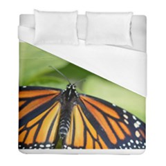 Butterfly 3 Duvet Cover Single Side (twin Size) by timelessartoncanvas