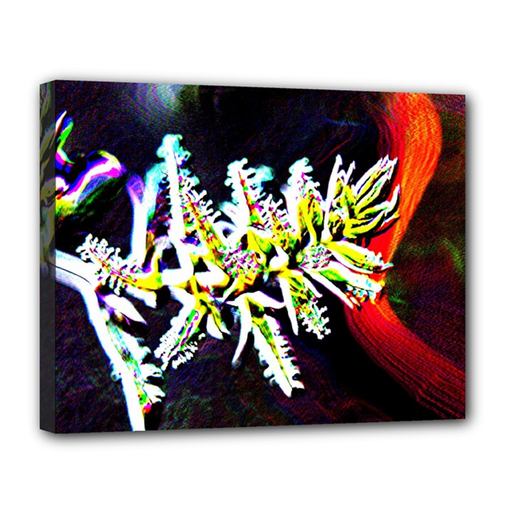 Digitally Enhanced Flower Canvas 14  x 11