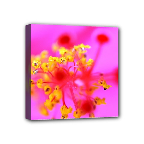 Bright Pink Hibiscus 2 Mini Canvas 4  X 4  by timelessartoncanvas