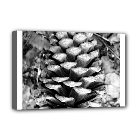 Pinecone Spiral Deluxe Canvas 18  X 12   by timelessartoncanvas
