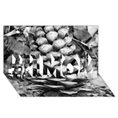 Pinecone Spiral #1 Mom 3d Greeting Cards (8x4)