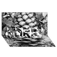 Pinecone Spiral Sorry 3d Greeting Card (8x4)