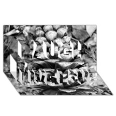 Pinecone Spiral Laugh Live Love 3d Greeting Card (8x4)