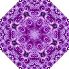 Purple Ecstasy Fractal Artwork Hook Handle Umbrellas (small) by KirstenStar