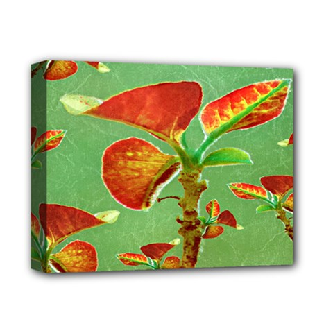 Tropical Floral Print Deluxe Canvas 14  X 11