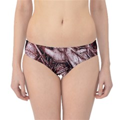 The Bleeding Tree Hipster Bikini Bottoms by InsanityExpressed