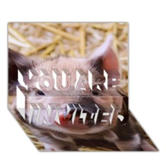 Sweet Piglet You Are Invited 3d Greeting Card (7x5)