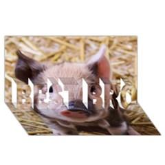 Sweet Piglet Best Bro 3d Greeting Card (8x4)