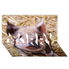Sweet Piglet Sorry 3d Greeting Card (8x4)