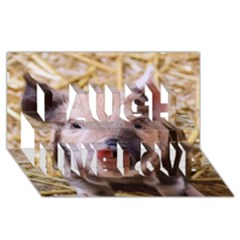 Sweet Piglet Laugh Live Love 3d Greeting Card (8x4)