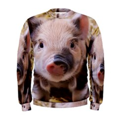 Sweet Piglet Men s Sweatshirts
