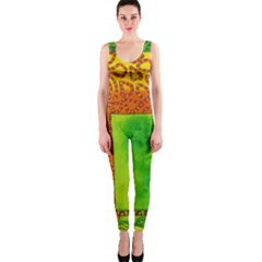 Patterned Giraffe  OnePiece Catsuits