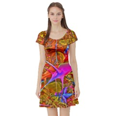 Biology 101 Abstract Short Sleeve Skater Dresses by TheWowFactor