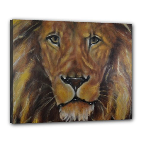 Cecil The African Lion Canvas 20  X 16  by timelessartoncanvas