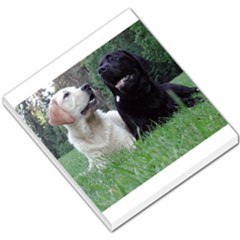 2 Labs Small Memo Pads by TailWags