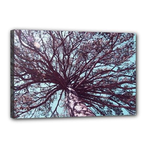Under Tree Paint Canvas 18  x 12  by infloence