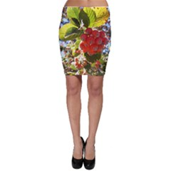 Rowan Bodycon Skirts by infloence