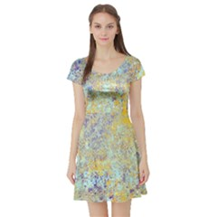 Abstract Earth Tones With Blue  Short Sleeve Skater Dresses