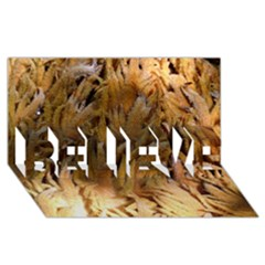 Sago Palm Believe 3d Greeting Card (8x4)