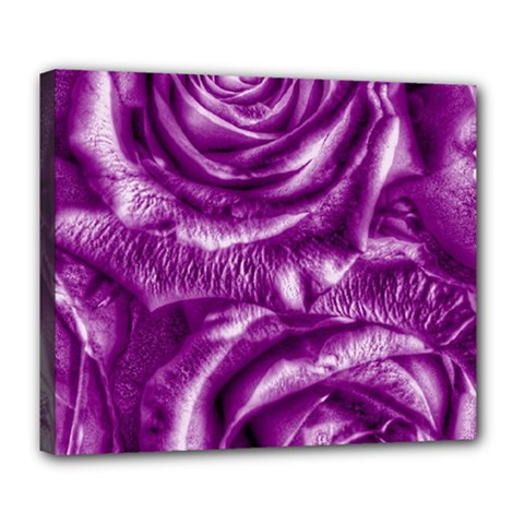 Gorgeous Roses,purple  Deluxe Canvas 24  X 20