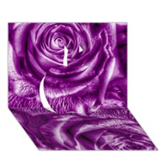 Gorgeous Roses,purple  Apple 3d Greeting Card (7x5)
