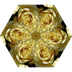 Yellow Roses Mini Folding Umbrellas