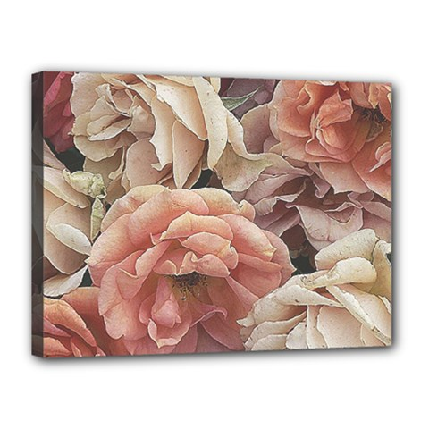 Great Garden Roses, Vintage Look  Canvas 16  X 12